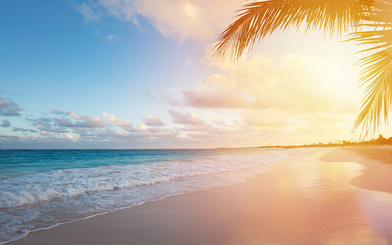 Image result for giamaica 800x500
